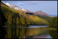 Long Lake with Autum Aspens, late afternoon. Alaska, USA