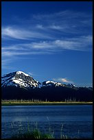 Mountains and Turnagain Arm near Portage. Alaska, USA ( color)