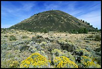 Cinder cone and sage,  Lava Beds National Monument. California, USA (color)
