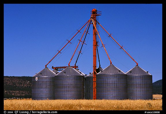 Agricultural silos. California, USA (color)