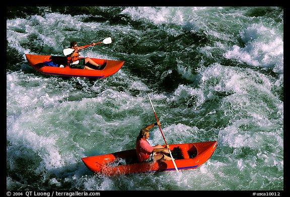 Kayakers on the rapids of the Trinity River, Shasta Trinity National Forest. California, USA (color)