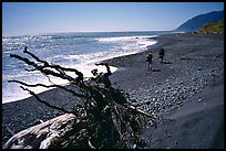 Driftwood and hikers, Lost Coast. California, USA