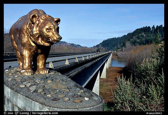 Golden Bears Wallpaper California Usa Golden Bear