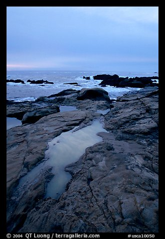 Tidal pools, sunset, Weston Beach. Point Lobos State Preserve, California, USA (color)