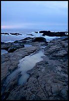 Tidal pools, sunset, Weston Beach. Point Lobos State Preserve, California, USA