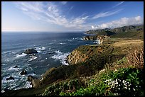 Coastline and Bixby creek bridge, late afternoon. Big Sur, California, USA (color)