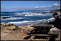 Man reading on a picnic table, Bean Hollow State Beach. San Mateo County, California, USA (color)