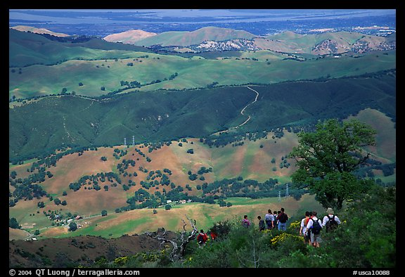 Group of Hikers descending slopes, Mt Diablo State Park. California, USA (color)