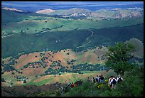 Group of Hikers descending slopes, Mt Diablo State Park. California, USA ( color)
