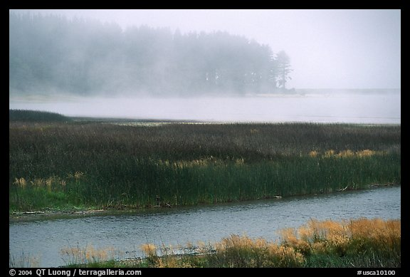 Humbolt Lagoon in the fog. California, USA (color)