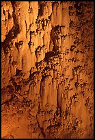 Rare cave formations, Mitchell caverns. Mojave National Preserve, California, USA (color)