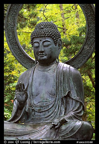 terra bella buddhist single men Meet single buddhist men in california on justdatecom - the only app that makes buddhist dating fun, fast, and free.