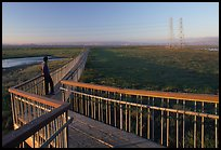 Man standing on boardwalk, Palo Alto Baylands. Palo Alto,  California, USA (color)