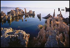 Tufa formations, South Tufa area, early morning. Mono Lake, California, USA ( color)