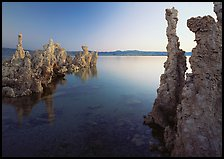 Tufa spires and Mono Lake at dusk. California, USA ( color)