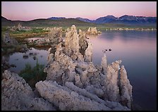 Tufas, South Tufa area,  dawn. Mono Lake, California, USA ( color)