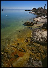 Colorful shore and tufa, mid-day. California, USA ( color)