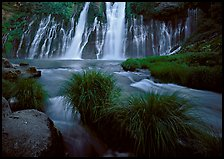 Grasses, stream and wide waterfall, Burney Falls State Park. California, USA (color)