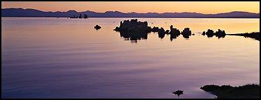 Color gradient on Mono Lake at sunrise. Mono Lake, California, USA (Panoramic color)