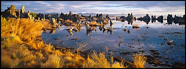 Mono Lake landscape. Mono Lake, California, USA (Panoramic color)