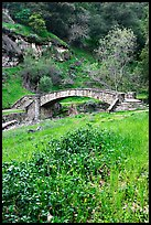 Stone bridge, Alum Rock Park. San Jose, California, USA ( color)