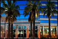 Palm trees reflected in building at sunset. San Jose, California, USA ( color)