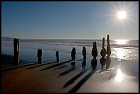 Row of wood pilars and sun near Fort Funston,  late afternoon, San Francisco. San Francisco, California, USA