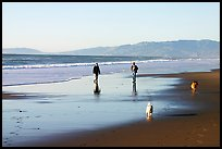 People and dogs strolling on beach near Fort Funston,  late afternoon, San Francisco. San Francisco, California, USA ( color)