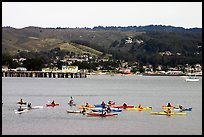 Sea kayakers, Pillar point harbor. Half Moon Bay, California, USA (color)