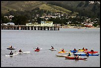 Sea kayaking in  Pillar point harbor. Half Moon Bay, California, USA ( color)