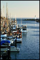 Harbor,  late afternoon. Santa Cruz, California, USA ( color)
