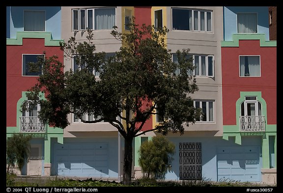 Tree and colorful house. San Francisco, California, USA (color)
