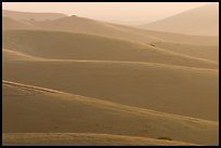 Ridglines, sunrise, Fort Ord National Monument. California, USA ( color)