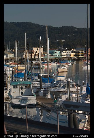 Boats and Fisherman's Wharf, afternoon. Monterey, California, USA (color)