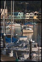 Boats and Fisherman's Wharf, afternoon, Monterey. Monterey, California, USA