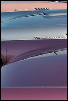 Thunderbird classic cars. Santa Cruz, California, USA