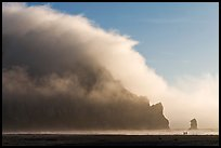 Morro Rock engulfed by afternoon fog. Morro Bay, USA ( color)