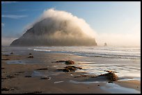 Beach with seaweed, and Morro Rock capped by afternoon fog. Morro Bay, USA