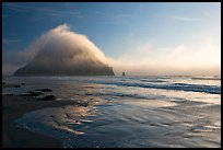 Morro Rock and fog reflected on beach. Morro Bay, USA