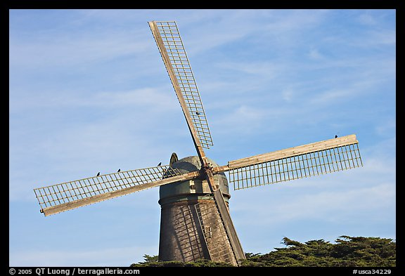 Dutch Mill and crows. San Francisco, California, USA