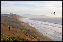 Man piloting model glider, Fort Funston, late afternoon. San Francisco, California, USA