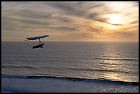 Hang gliding above the ocean at sunset,  Fort Funston. San Francisco, California, USA ( color)