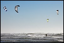 Multitude of kite surfing wings, afternoon. San Francisco, California, USA ( color)