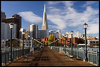 Pier 7 and Transamerica Pyramid, morning. San Francisco, California, USA