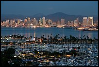 Marina and skyline at night. San Diego, California, USA