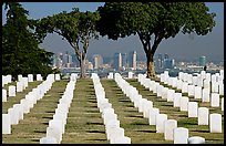 Rows of white gravestones and San Diego skyline, Point Loma. San Diego, California, USA