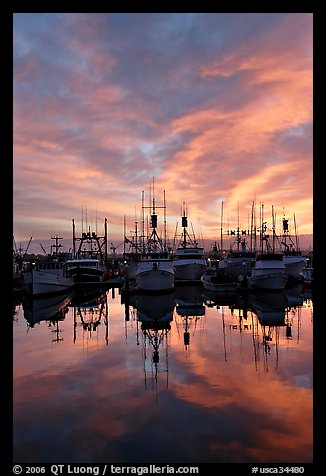 Fishing fleet at sunset. San Diego, California, USA (color)