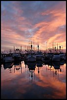 Fishing fleet at sunset. San Diego, California, USA ( color)