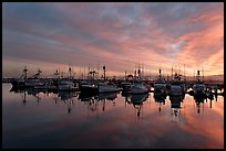 Fishing boats at sunset. San Diego, California, USA (color)