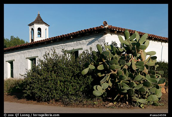 Cactus and adobe house, Old Town State Historic Park. San Diego, California, USA